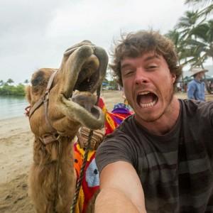 animal selfie1