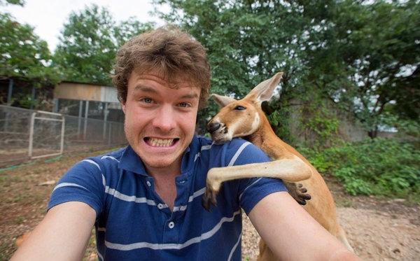 animal selfie2